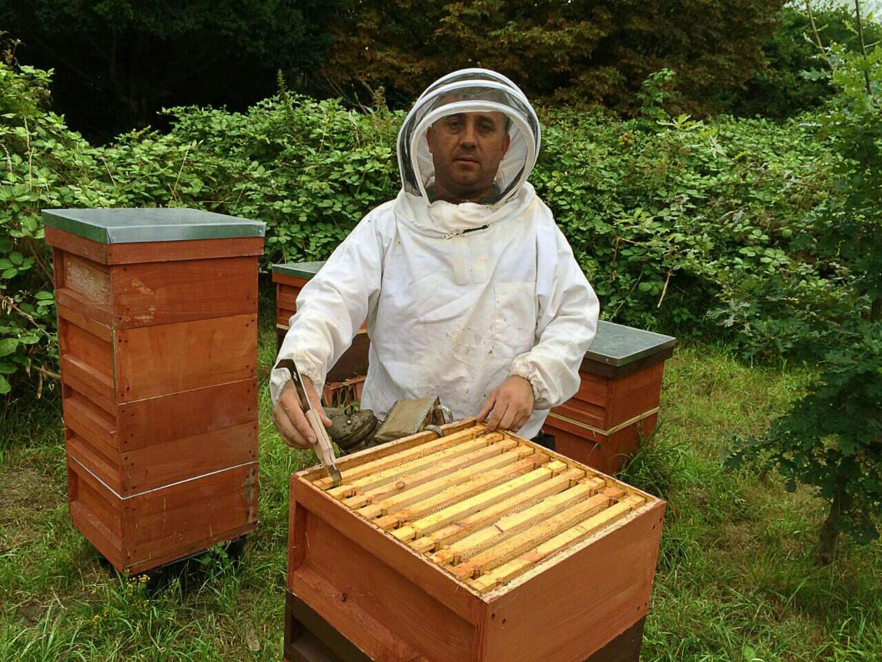 Eduard working with beehive